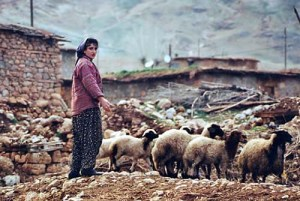 A Turkish shepherdess